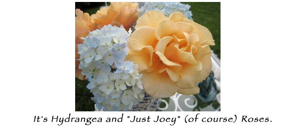"It's Hydrangea and ""Just Joey"" (of course) roses"