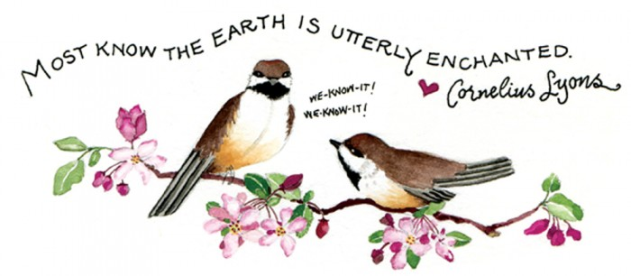 earthbirds