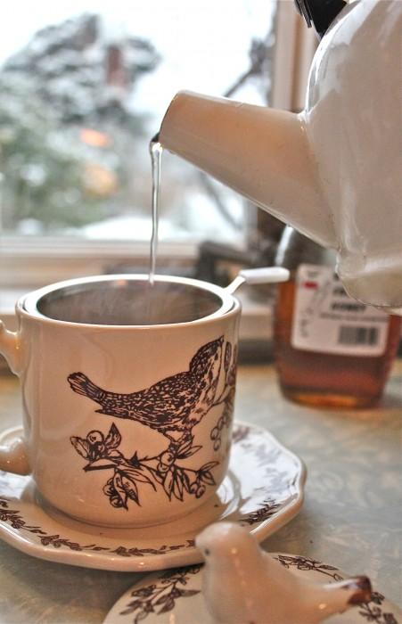 wonderful bird cup