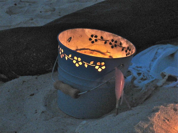 bug buckets