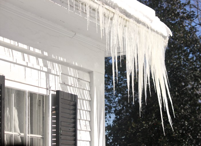 windblown icicles