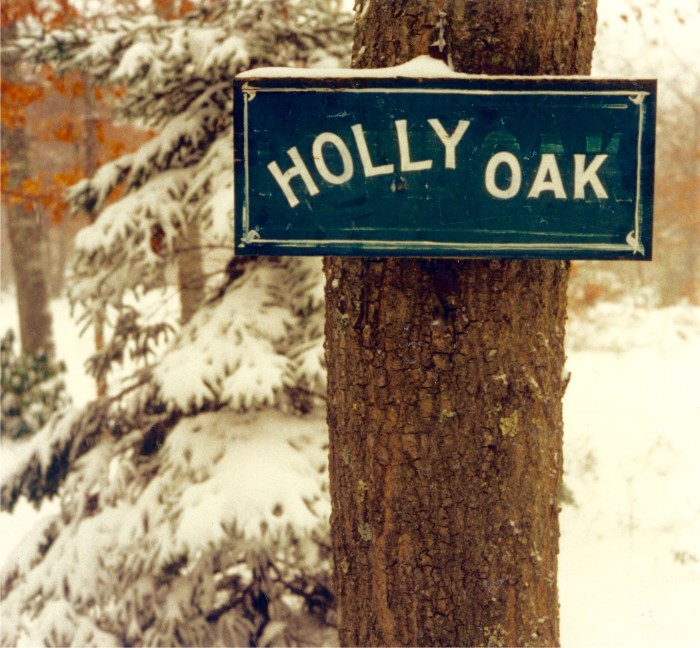 Martha S Vineyard Cottage Giveaway Winners: What Ever Happened To HOLLY OAK???