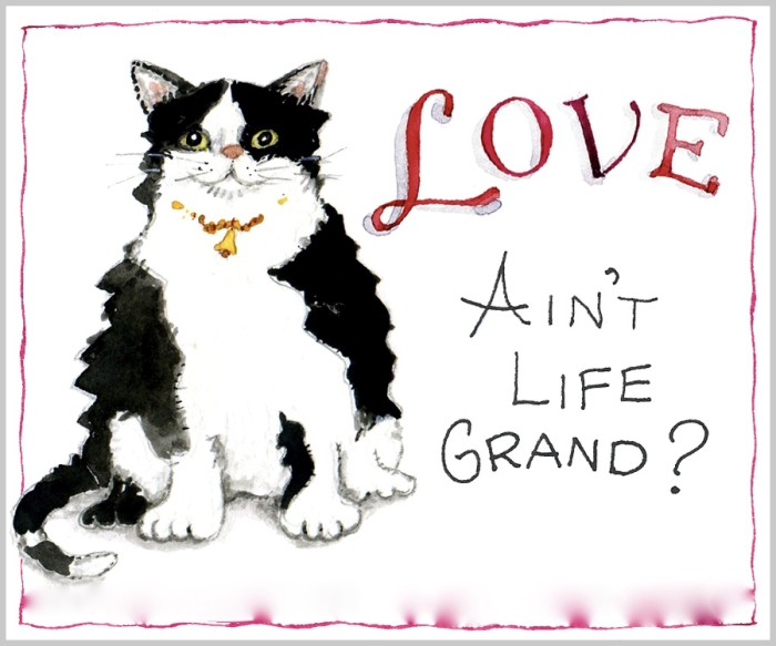 words cat critters love life is good