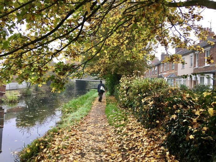 endorse fall walk aylesbury canal